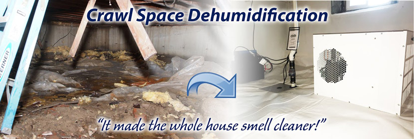 Crawl Space Dehumidifier Installation Services