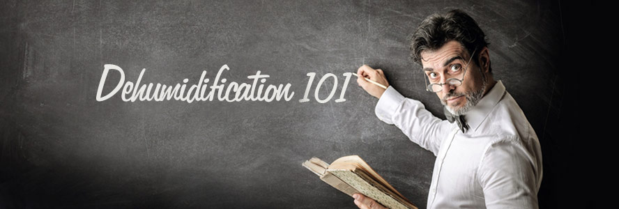 Dehumidification Tips 101