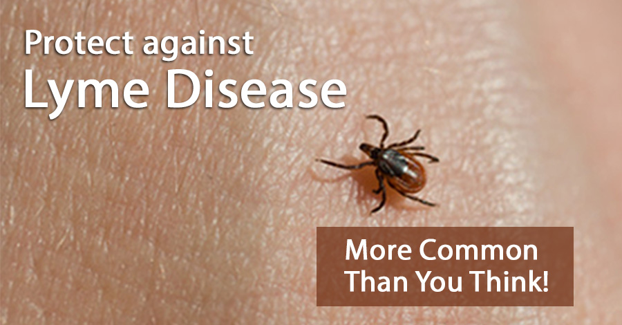 Protect Against Lyme Disease