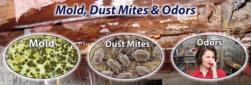 Mold, Dust Mites and Odors removal